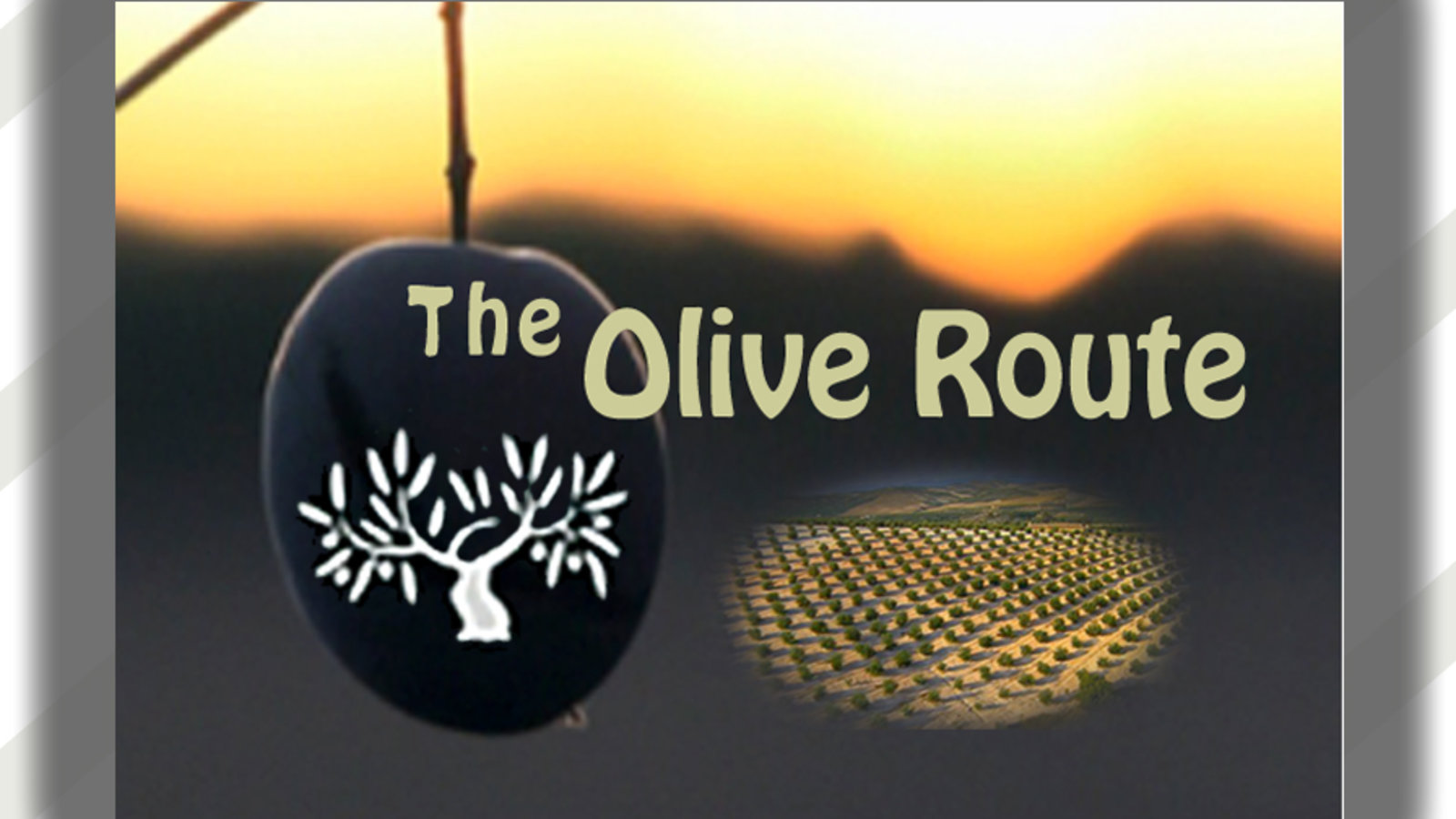 Olive Route Collection - Shaping The Mediterranean