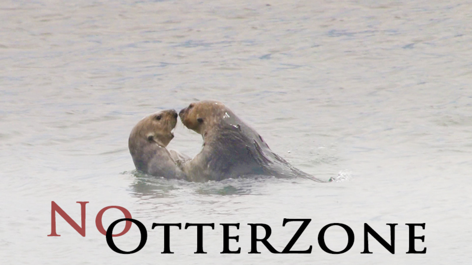 No Otter Zone
