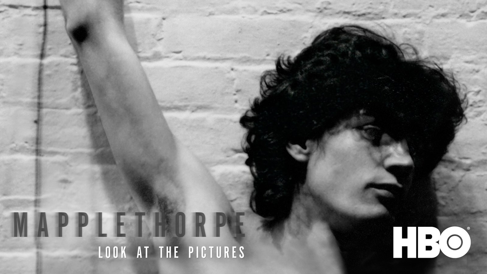 Mapplethorpe: Look at the Pictures - The Provocative Photographer Who Changed Contemporary Photography