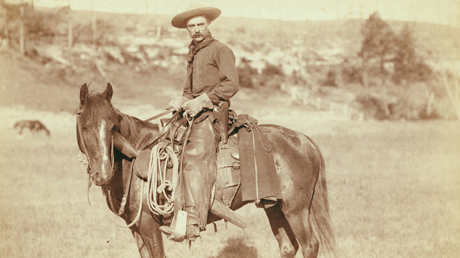 Cowboys and Cattle Drives