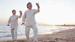 The Five Families of Tai Chi Practice