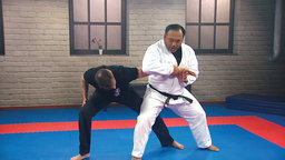 Jujitsu: Pliable Grappling Methods
